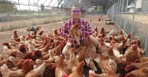 食農教育青農青創示範基地:山城裡的好農好學基地