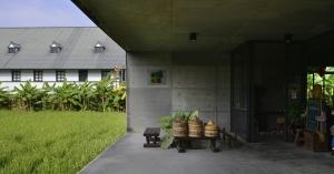 有機稻場:漂浮在稻浪上的生態教室