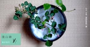 【淺山綠專欄|散步理花 01】散盡花意:茅莓