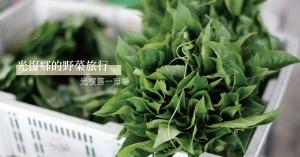 光復鄉的野菜旅行(上):光復第一市場