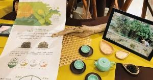 【小農食光.竹茶市集】有機小農與建築師首度合作,打造書店裡的竹茶屋