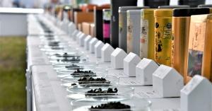 【專訪】下一個100年屬於臺灣茶的未來—專訪茶業改良場場長蘇宗振