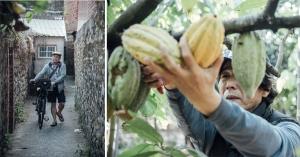 【綠色旅行】職人小農帶路,探索生態與人文的潮州!「潮‧旅行」10條主題路線,體驗大武山下的小鎮魅力