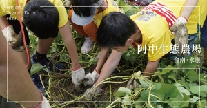 【台南永康】阿中生態農場:文化傳承、生態平衡與環境永續,工程師的農夫夢,用身體力行化為現實