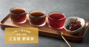 【台北.士林】三玉號野草茶:野草當媒介,展演台灣土地與住民的共好