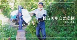 【新竹橫山】悅音阿甲自然農園:住在山的臂彎裡,含情脈脈的歸農生活