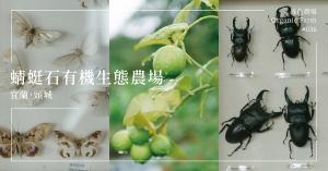 【宜蘭頭城】蜻蜓石有機生態農場:種菜植樹、養蟲餵雞,昆蟲教授打造生活的美好算式