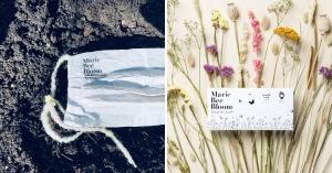 【永續設計】最帶「種」的口罩!100%天然材料製成,用完後還能種出美麗的花朵