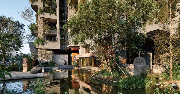 【建築師的永續之路】江文淵:永遠站在樹這一邊!種樹、保水,打造藏風納氣的新生態城市