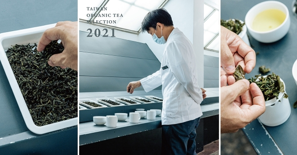 【2021有機茶大賞|01】味覺家的養成之旅:茶葉感官品評員訓練