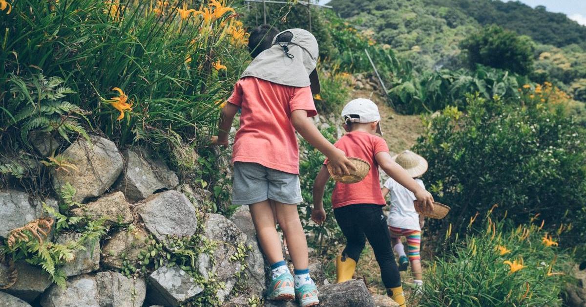 【士林】風動草休閒農園:頂山的大自然學校