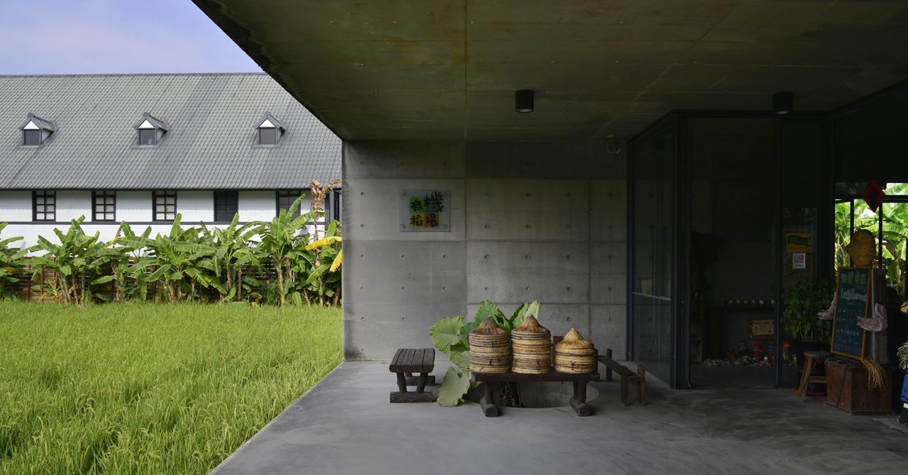 【苑裡】有機稻場:漂浮在稻浪上的生態教室