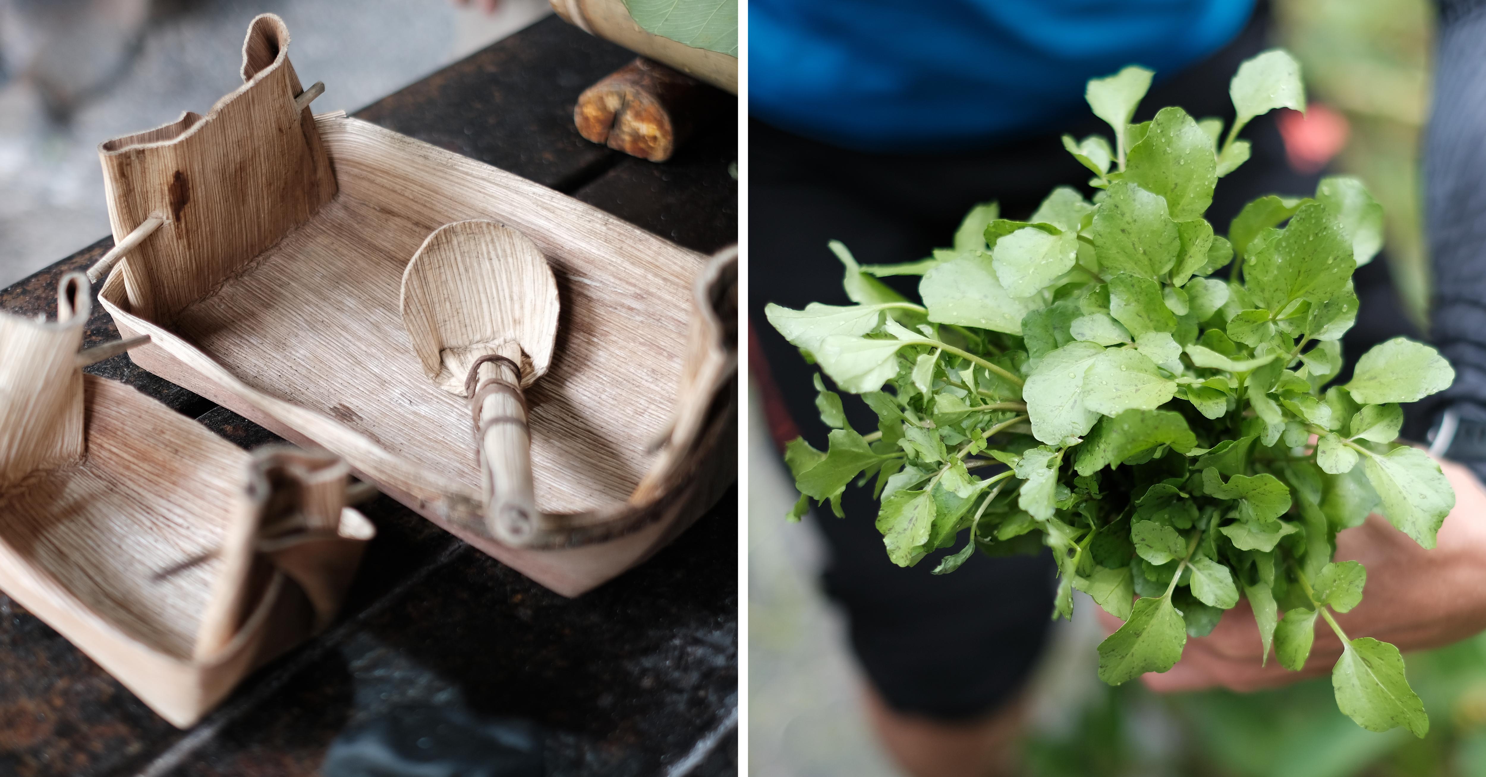 【花蓮光復】欣綠農園︱自摘野菜、自炊石頭鍋,給城裡人的原住民生活智慧小旅行