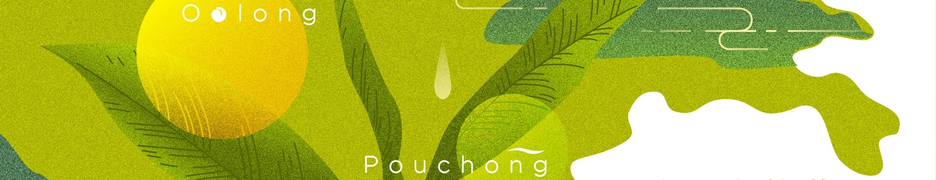 2020臺灣有機茶大賞:有機茶界的米其林大賽