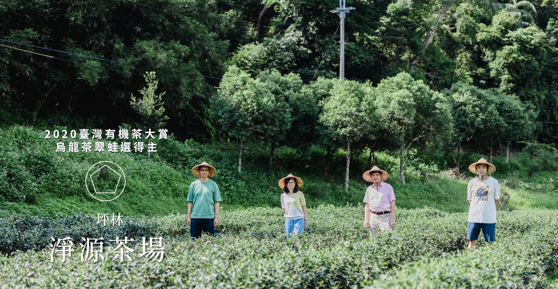 【有機茶大賞】十年磨一劍,擊敗高山茶:淨源茶場帶領年輕茶師,做出冠軍烏龍茶