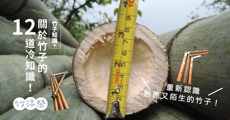 【竹子知識+】冬筍是哪一種竹筍?非洲有產竹子嗎?關於竹子的12道冷知識!