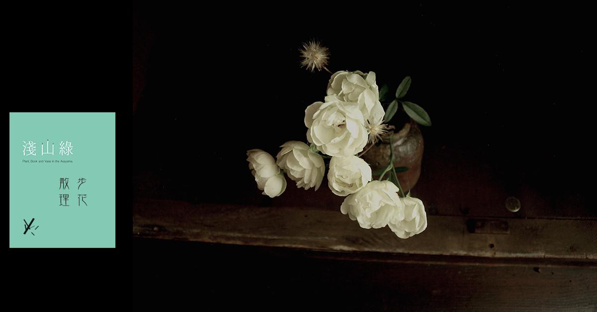 【淺山綠專欄 散步理花03】白露斯塔、小花咸豐草與蜂巢裹花