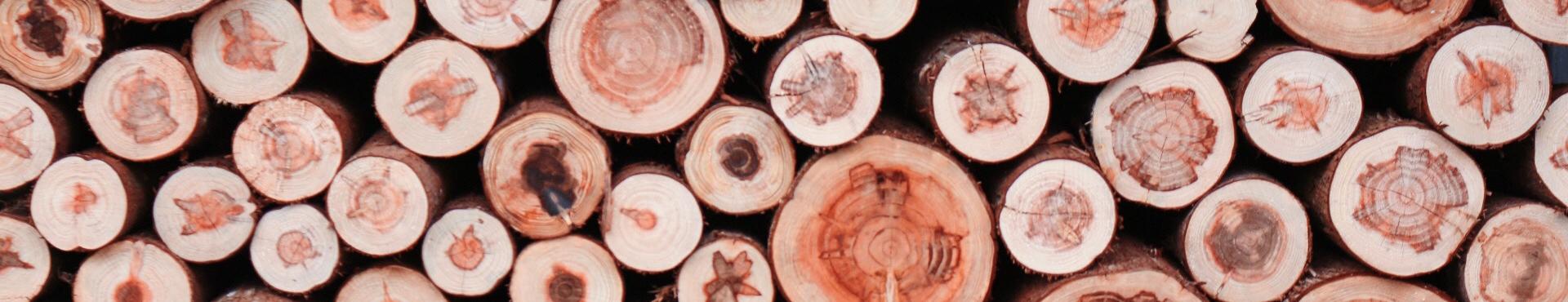 國產材抵家:木作生活節