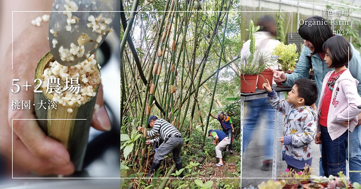 【桃園大溪】5+2農場:五天工作、兩天樂農,與大自然共舞的生活
