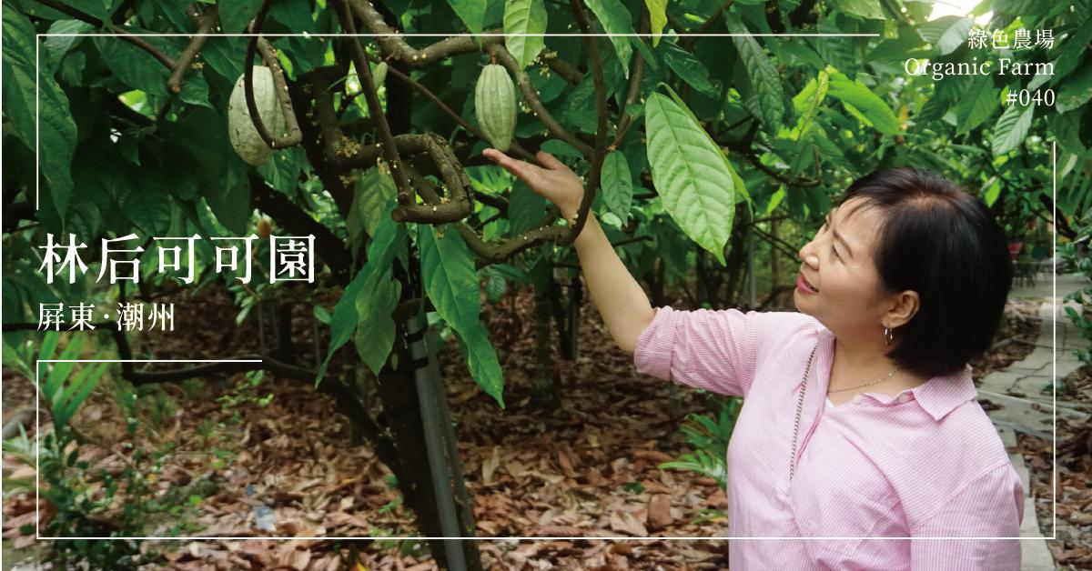 【屏東潮州】林后可可園:當可可遇上美妝,打造台灣可可出口方程式