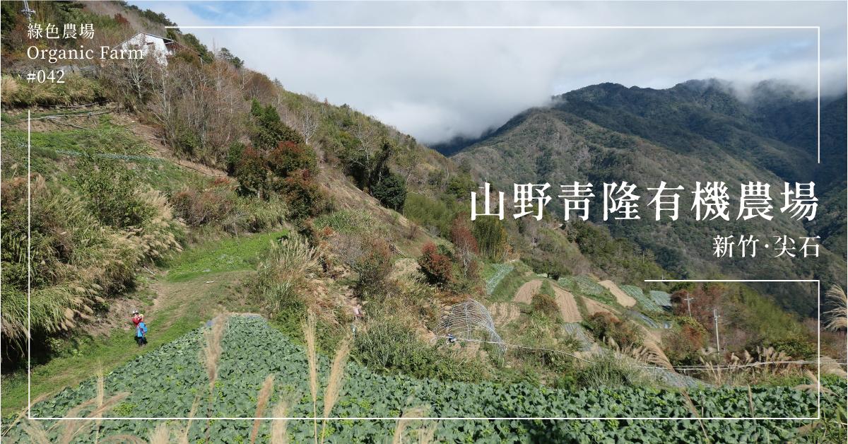 【新竹尖石】山野青隆有機農場:一不小心,就太豐盛了!煮一鍋山野精華