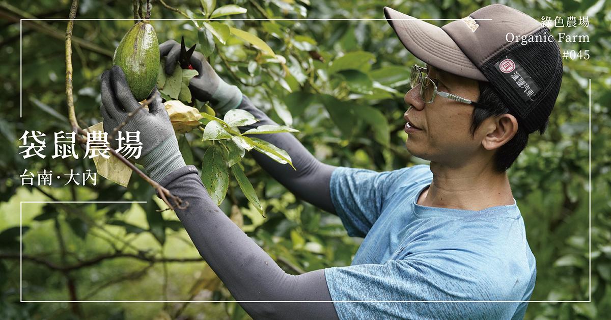 【台南大內】袋鼠農場:科技廠主管轉戰「晴耕雨讀」的農耕夢